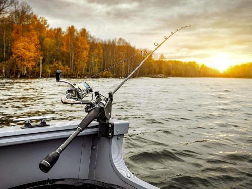 fiske rbn
